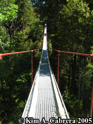 The suspension bridge. I wasn't going out there. I                 don't like heights! Photo copyright by Kim A. Cabrera                 2005.
